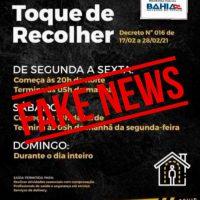 fake-toque